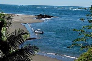 osa-peninsula-beaches