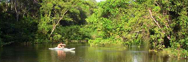 sierpe-river-fishing
